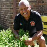 Captain Cook used a native Australian plant to fight scurvy. Are Indigenous foods the future?