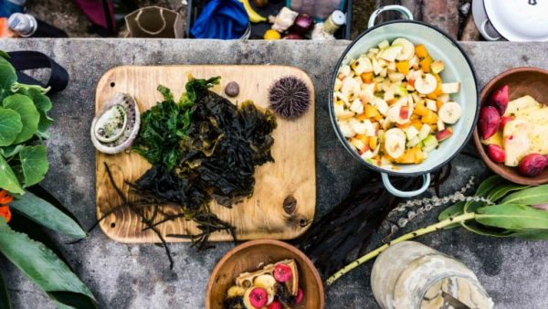 Return to the wild: The chef bringing foraged food to the table