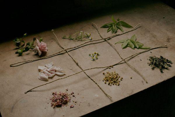 How to Create Your Own Herbal Tea Garden